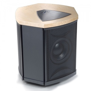MarginLogan Dept i Subwoofer